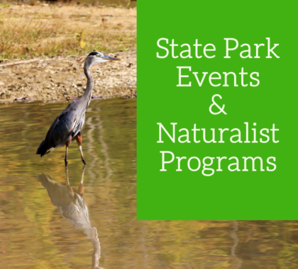 Naturalist Programs